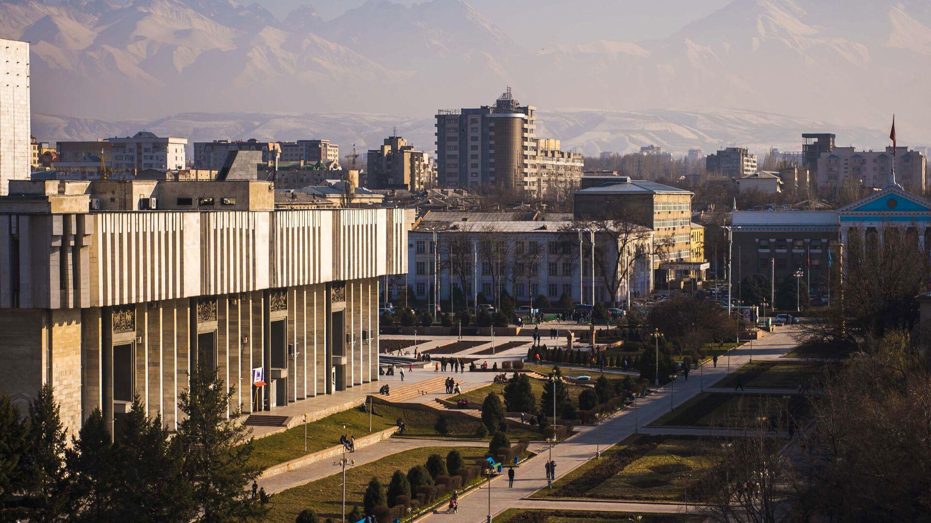 Миссия МПА СНГ отметила хорошую подготовку референдума в Киргизии