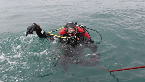 Водолаз МЧС во время поисково-спасательной операции на месте крушения самолета Ту-154 в Черном море у берегов Сочи