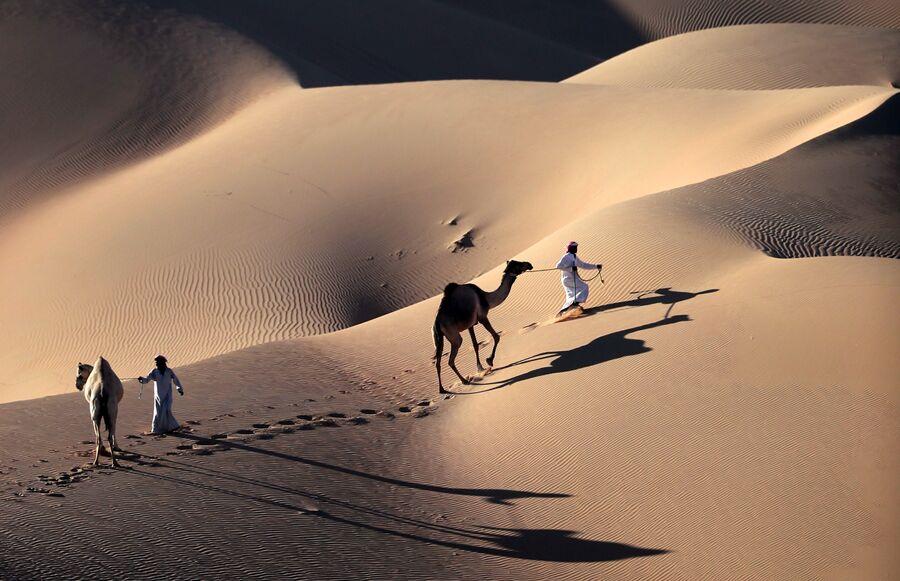 Мужчины идут с верблюдами по пустыне Лима