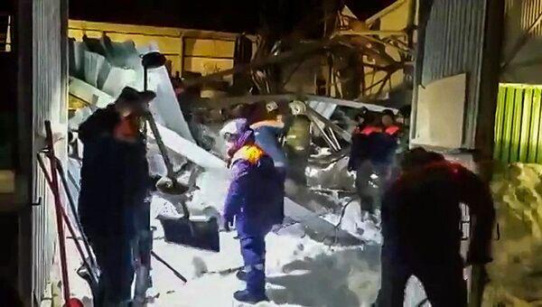 Обрушение конного клуба в Бердске Новосибирской области