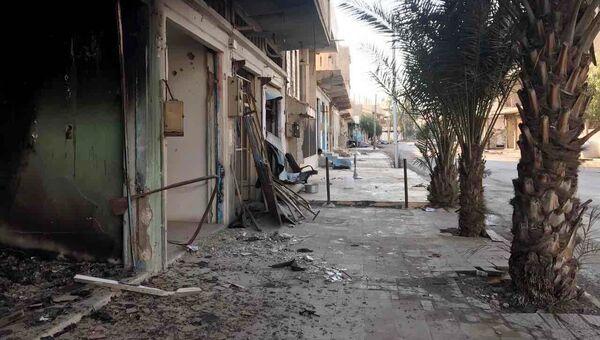 Разрушенные в результате боевых действий дома в жилой части города Пальмира в сирийской провинции Хомс. Архивное фото