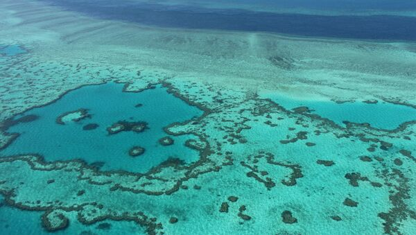 Вид с воздуха на Большой Барьерный риф. Архивное фото