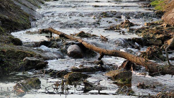 Минэкологии МО получило 117 заявок на расчистку и экореабилитацию рек