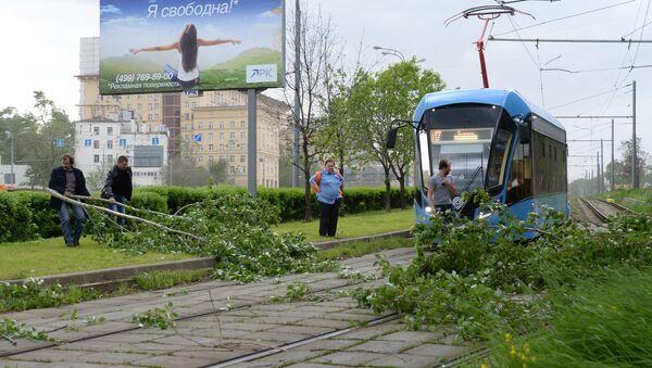 Сломанное ураганом дерево на трамвайных путях в Москве