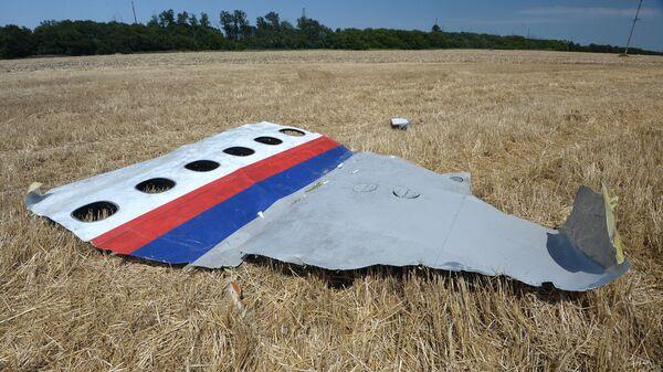 Обломки потерпевшего крушение малайзийского Boeing 777. Архивное фото