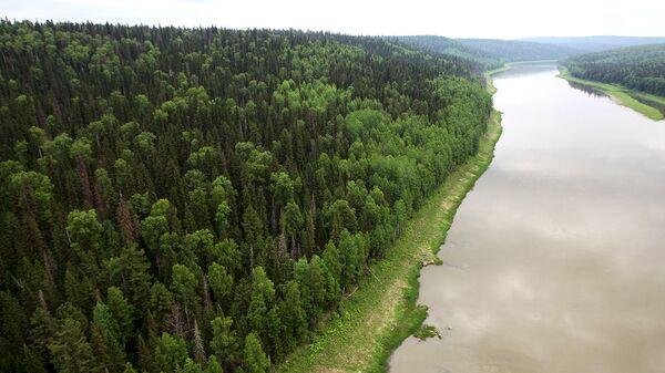 ОНФ предложил меры для улучшения экологии в Сибири и на Дальнем Востоке
