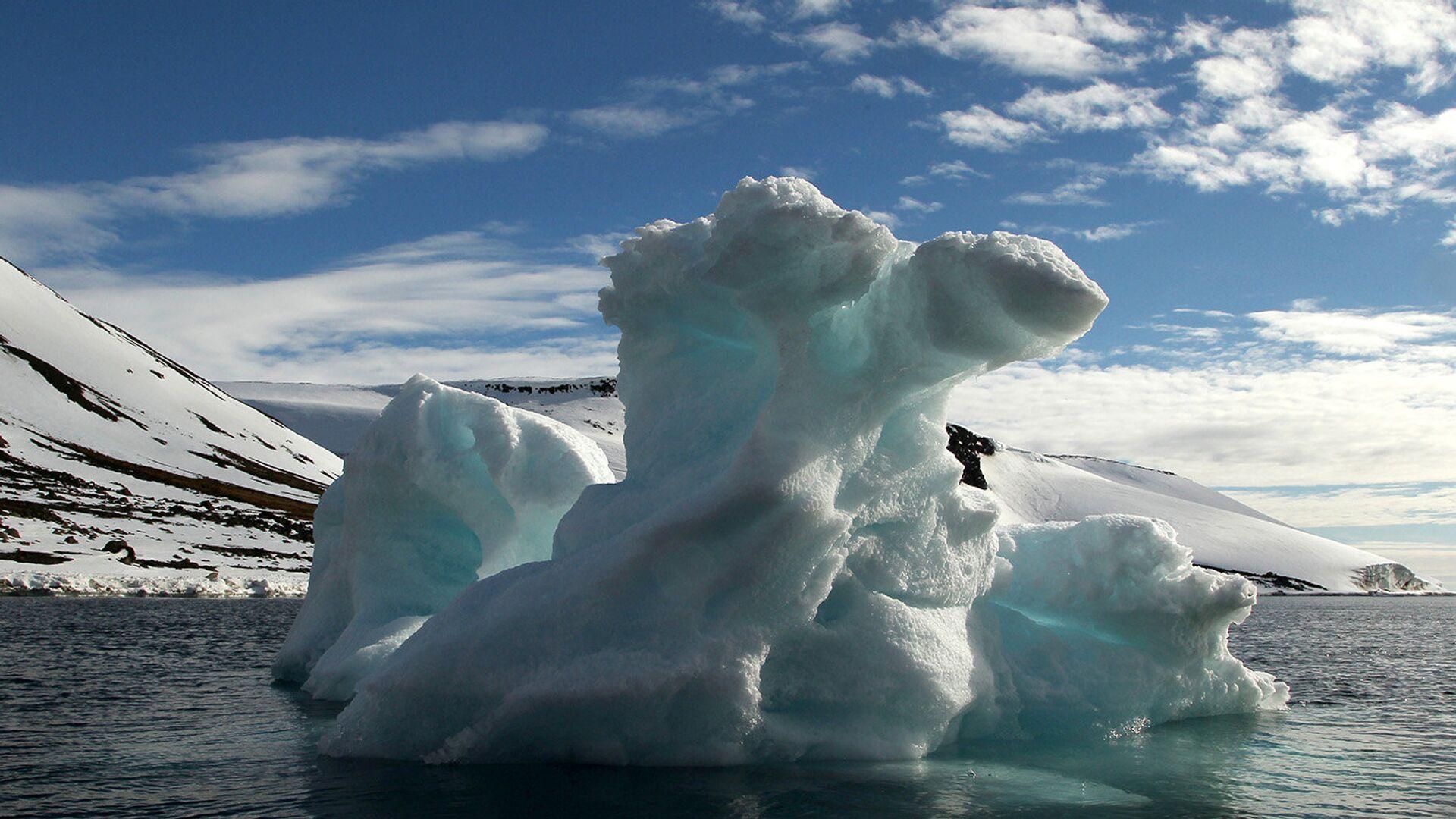 Путин дал поручение по подготовке к председательству в Арктическом совете