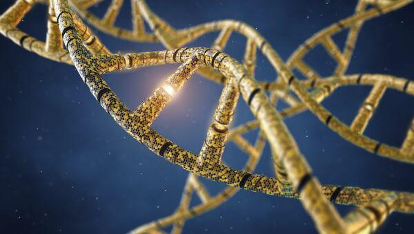 Генетически модифицированные молекулы ДНК. Архивное фото