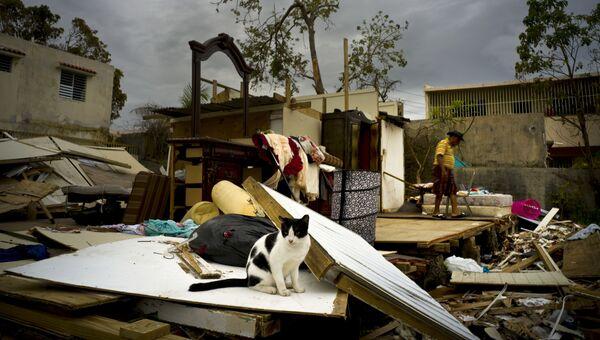 Последствия урагана Мария в Сан-Хуане, Пуэрто-Рико. Архивное фото