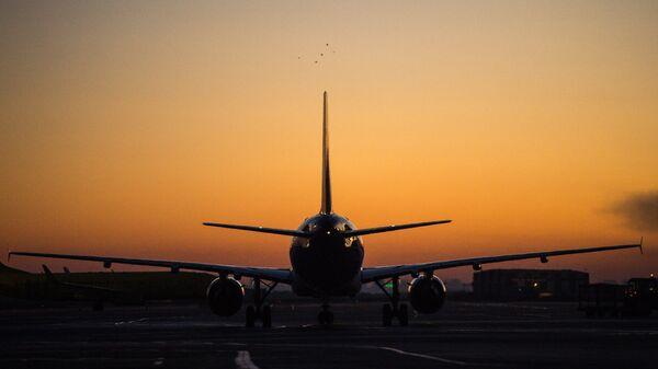 В Новосибирске пассажиры устроили дебош на борту самолета