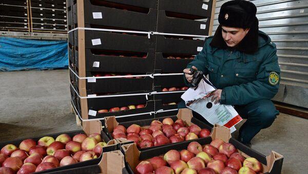 Сотрудник таможенной службы РФ осуществляет осмотр груза. Архивное фото