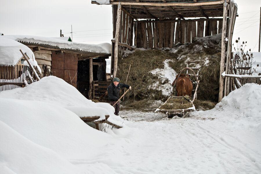 Во дворе семьи Имухаметовых. Село Желтое Оренбургской области
