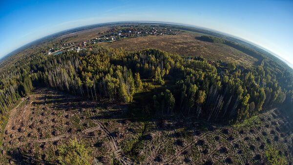 3000 информационных щитов будут охранять заповедные земли Подмосковья