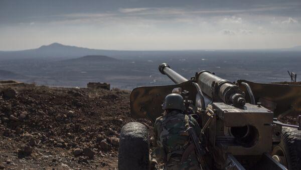 Военнослужащий Сирийской арабской армии на огневой позиции. Архивное фото