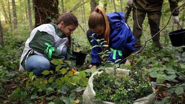 Экологическое образование должно стать обязательным в России