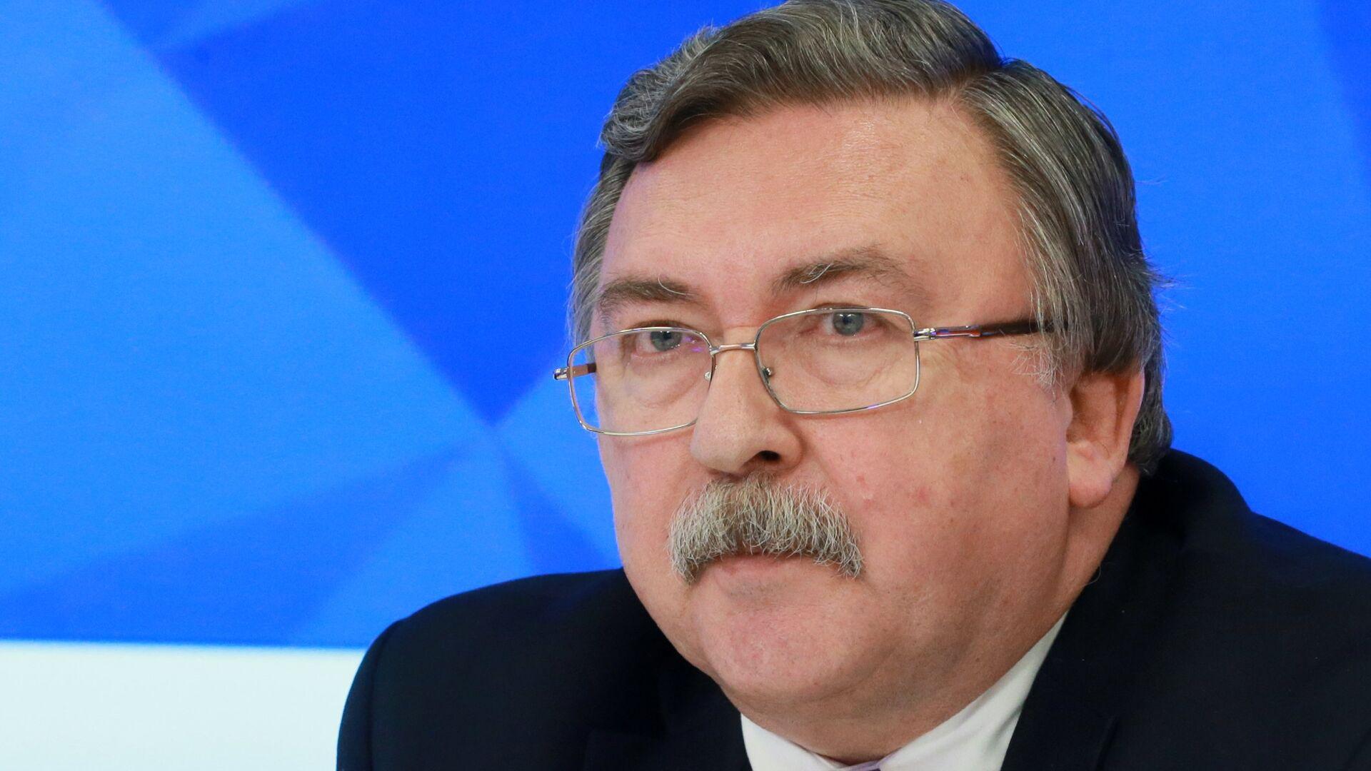 """Постпред в Вене призвал не верить претензиям США о """"вмешательстве"""" России"""