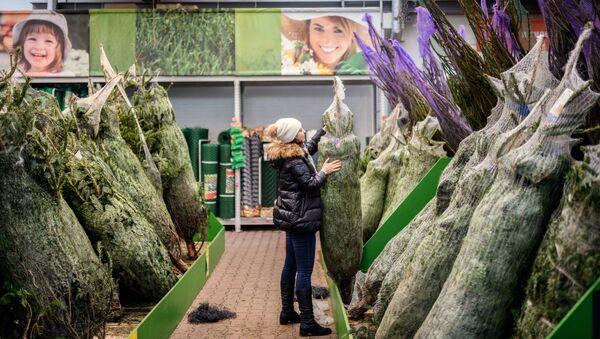 Посетитель выбирает елку в гипермаркете ОБИ в Москве