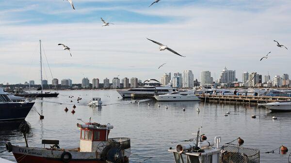 Порт города Пунта-дель-Эсте в Уругвае. Архивное фото