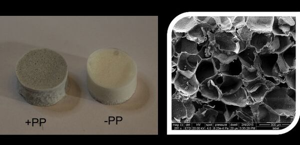 Образцы костных имплантатов на основе желатина, мезопористого силикагеля, гидроксиапатита и полипиррола
