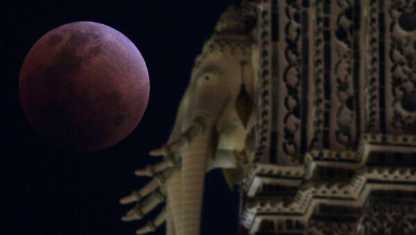 Кровавая Луна в Бангкоке