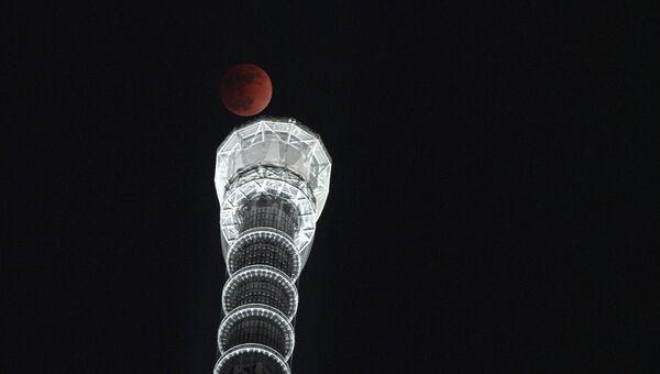 Полная луна на фоне башни Sky Tree в Токио