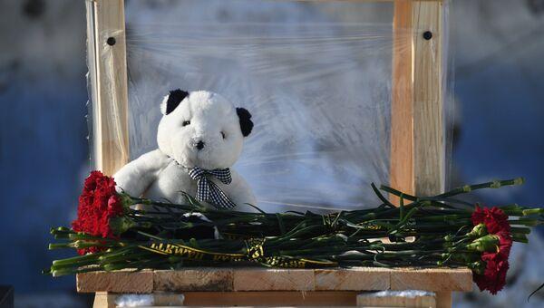 Цветы в память о жертвах крушения самолета Ан-148 Саратовских авиалиний в районе места трагедии. 13 февраля 2018