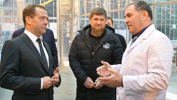 Председатель правительства РФ Дмитрий Медведев и глава Чечни Рамзан Кадыров во время посещения тепличного комплекса ЮгАгроХолдинг в Грозном. 26 февраля 2018