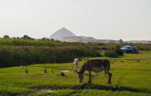 Местность в окрестностях Каира. На дальнем плане: ломаная пирамида