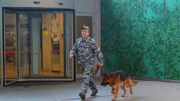 Кинолог с собакой в торгово-развлекательном комплексе Афимолл Сити в Москве