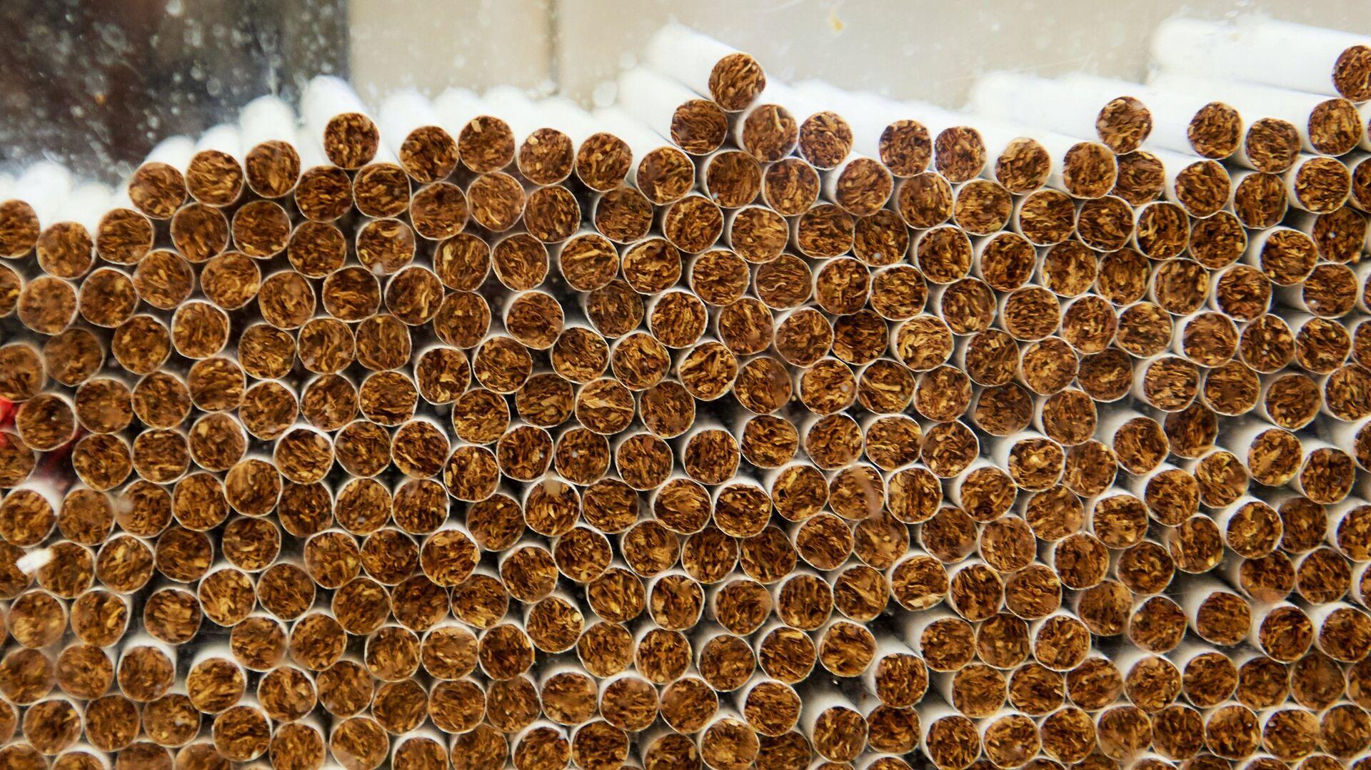 Производство сигарет на фабрике АО Филип Моррис Ижора в Ленинградской области - РИА Новости, 1920, 26.07.2021