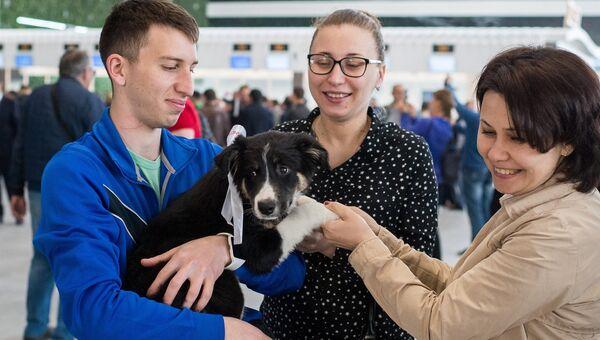 Открытие нового терминала аэровокзального комплекса в Симферополе