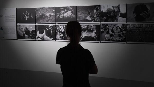 Посетитель на выставке победителей и призеров Международного конкурса фотожурналистики имени Андрея Стенина