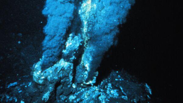 Археи Pyrolobus fumarii образуют белесый налет возле черного курильщика. Срединно-Атлантический хребет