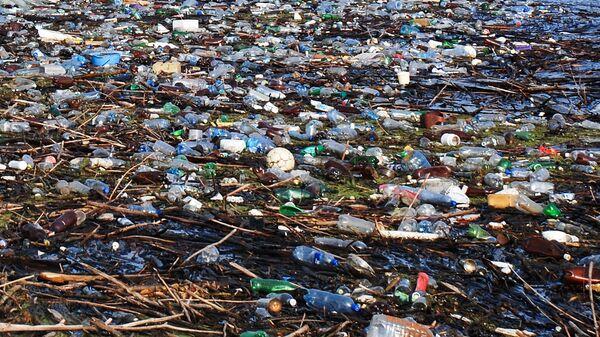 Минэкологии проверяет мусорный полигон под Нижним Новгородом, рядом с которым погибла рыба