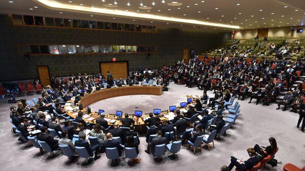 На заседании Совета Безопасности ООН в Нью-Йорке. 15 мая 2018