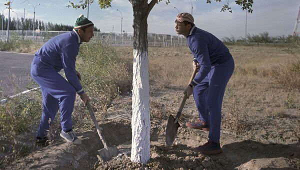Летчики-космонавты СССР Виктор Васильевич Горбатко и Владислав Николаевич Волков ухаживают за деревом, которое посадил первый космонавт Юрий Гагарин. 1 мая 1970