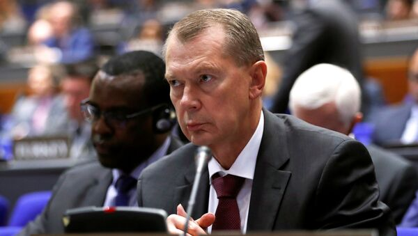 Постоянный представитель России при Организации Объединенных Наций по запрещению химического оружия Александр Шульгин выступает на специальной сессии ОЗХО в Гааге, Нидерланды. 26 июня 2018