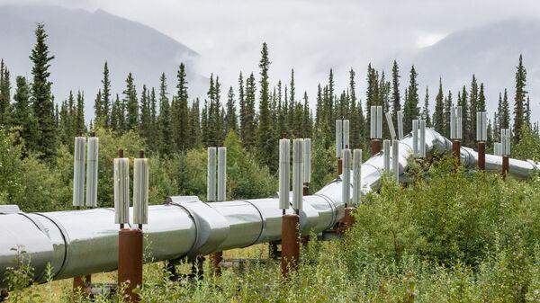 Администрация Трампа разрешит добычу нефти на 82% заповедника на Аляске