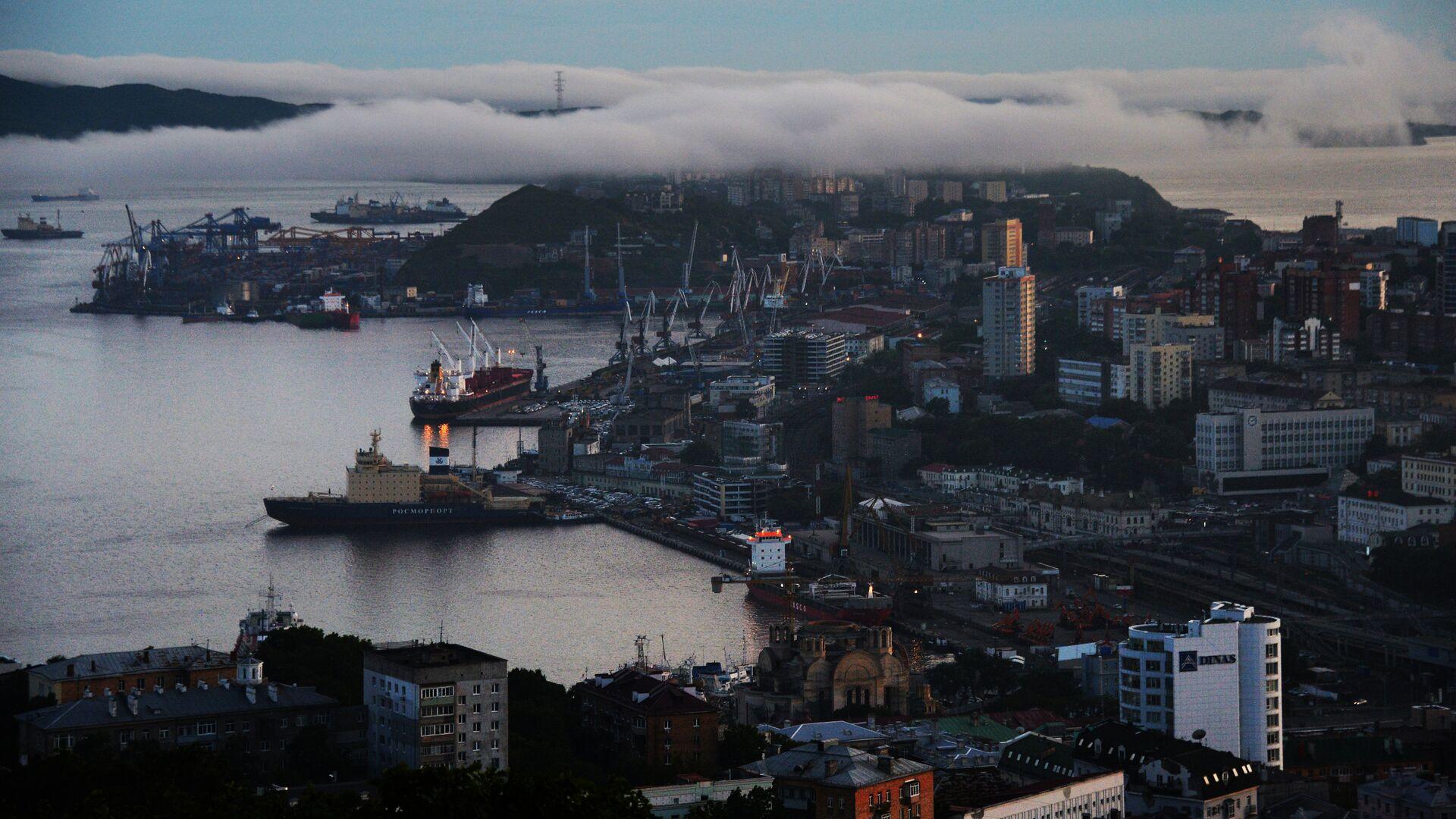 Вид на центр города вечером с сопки Орлиное гнездо во Владивостоке - РИА Новости, 1920, 03.06.2021