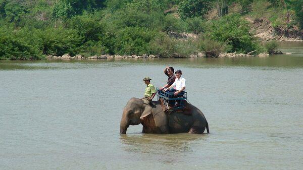 Туристы катаются на слоне в парке Йок Дон, Вьетнам