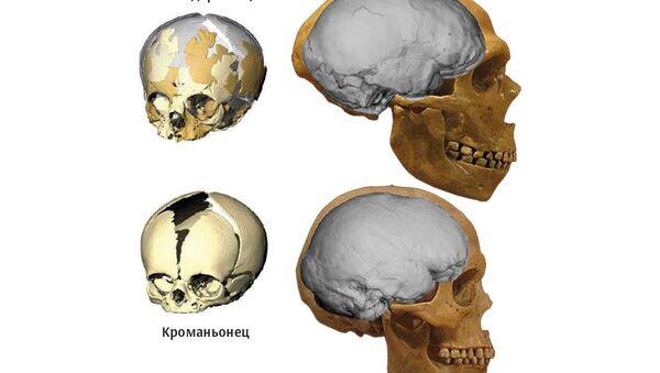 Сравнение черепа неандертальца с черепом кроманьонца