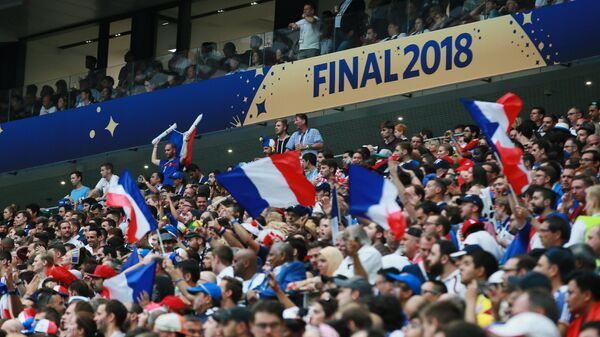Болельщики сборной Франции во время финального матча ЧМ по футболу