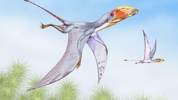 Птерозавры колонизовали Землю практически сразу после их появления