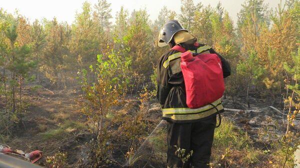 Тушение тлеющей травяной подстилки во время природных пожаров