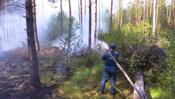 Работы по тушению природного пожара. Архивное фото