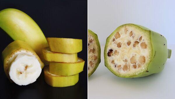 Дикие и культурные бананы