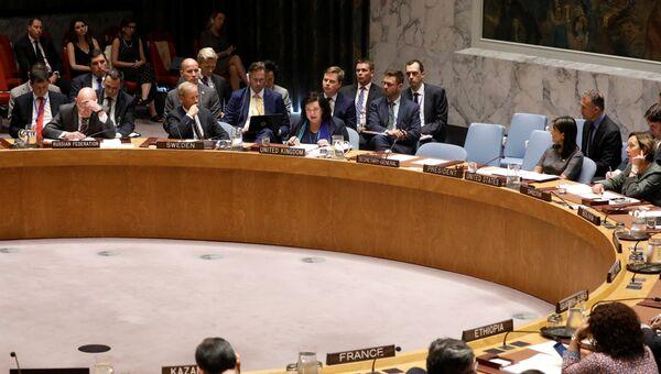 LIVE: Заседание Совбеза ООН по делу Скрипалей