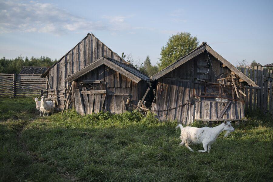 Село Кукуй. Макарьевский район, Костромская область