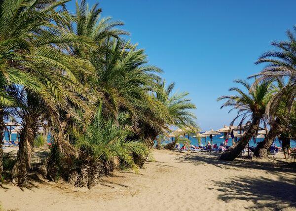 Пальмовый пляж в заповеднике VAI на острове Крит
