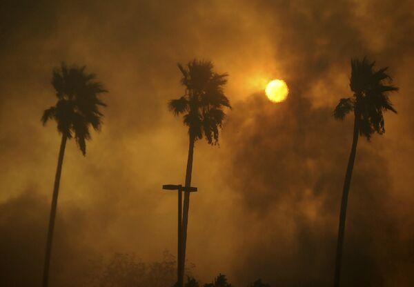 В результате пожаров уничтожено по меньшей мере 750 домов, без крова остались сотни людей